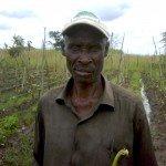 Farm Caretaker | Connect Africa | image