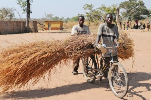 There is demand for mobile phone coverage in communities in rural areas in Zambia