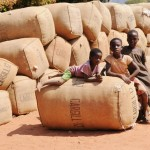 People in rural areas can benefit from rural mobile phone coverage to find out vital information on commodity pricing